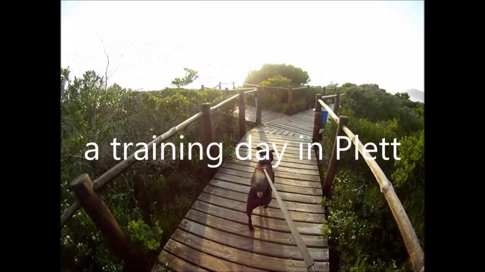 A training day in Plett