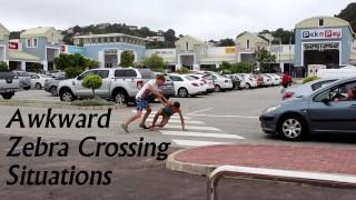 Awkward Zebra Crossing Situations